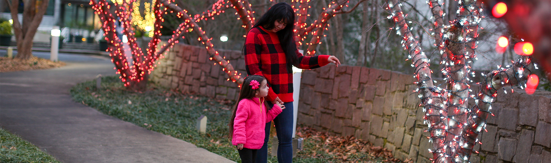 A mother and daughter look at trees lit for the holidays at the State Botanical Garden of Georgia