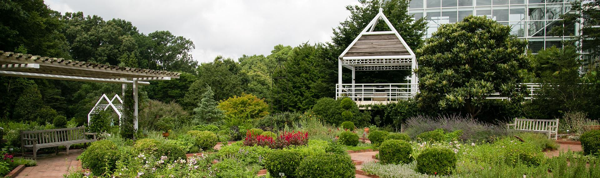 Botanical Gardens early summer