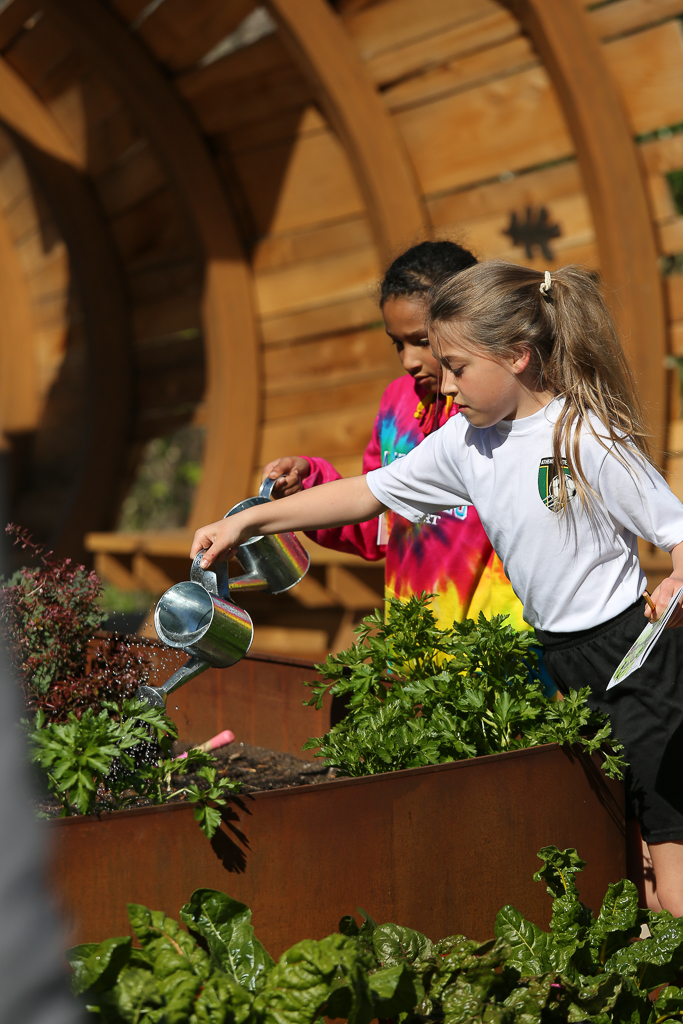 Kids learn how the plants that feed us need to be fed with water, sunlight and nutrients.