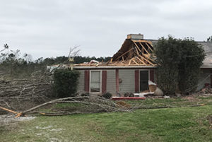 A tornado damaged homes and uprooted trees in Harris County.