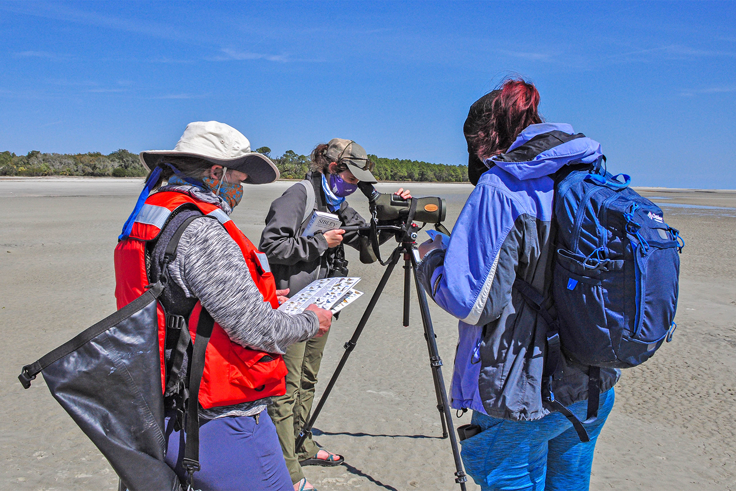 Eco tour guides using a scope on the beach
