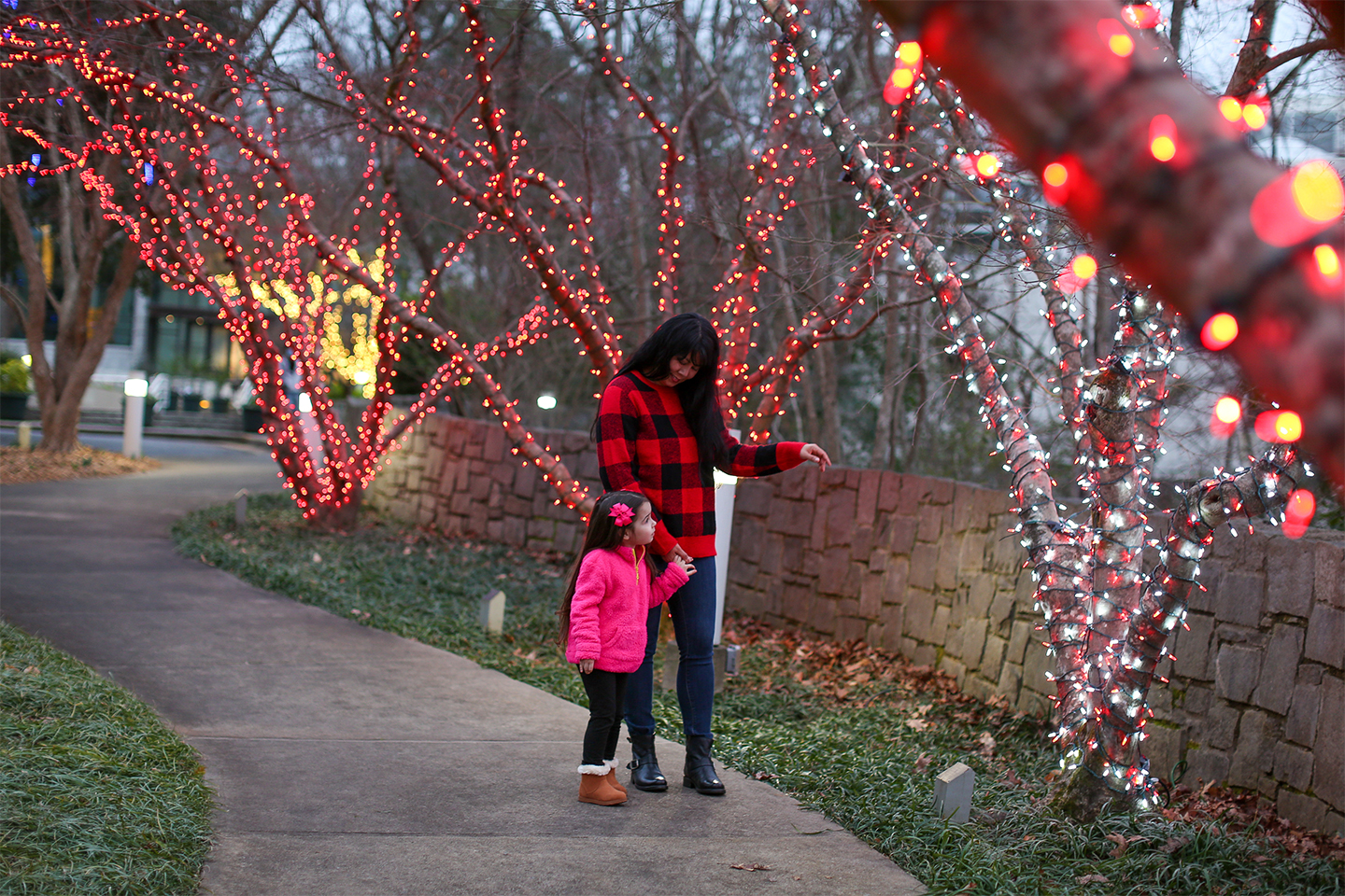 A mother and daughter walk by lit trees at the State Botanical Garden of Georgia